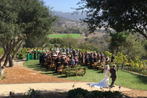 weddings_02-900x600