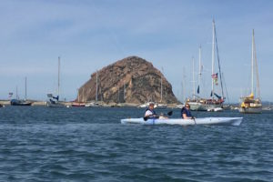 Kayaking in Morro Bay Estuary